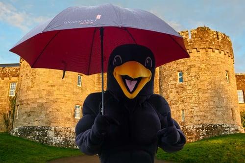 Raven Castle Arch